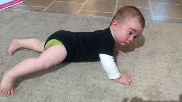 Alex-7mos-crawling